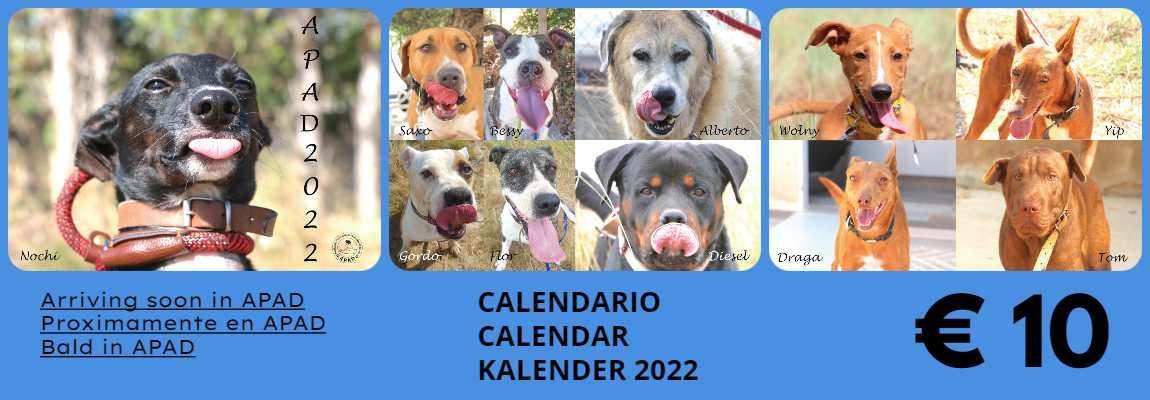 TODO EL PROCEDIMIENTO VA A NUESTROS PERROS - ALL PROCEEDS GO TO OUR DOGS - ALLE ERLÖSE GEHEN UNSERE HUNDE