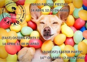 fiesta-apad-14-4-19